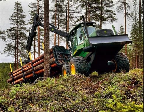 Лесозаготовка для собственного производства клееного бруса, бревна, CLT-панелей